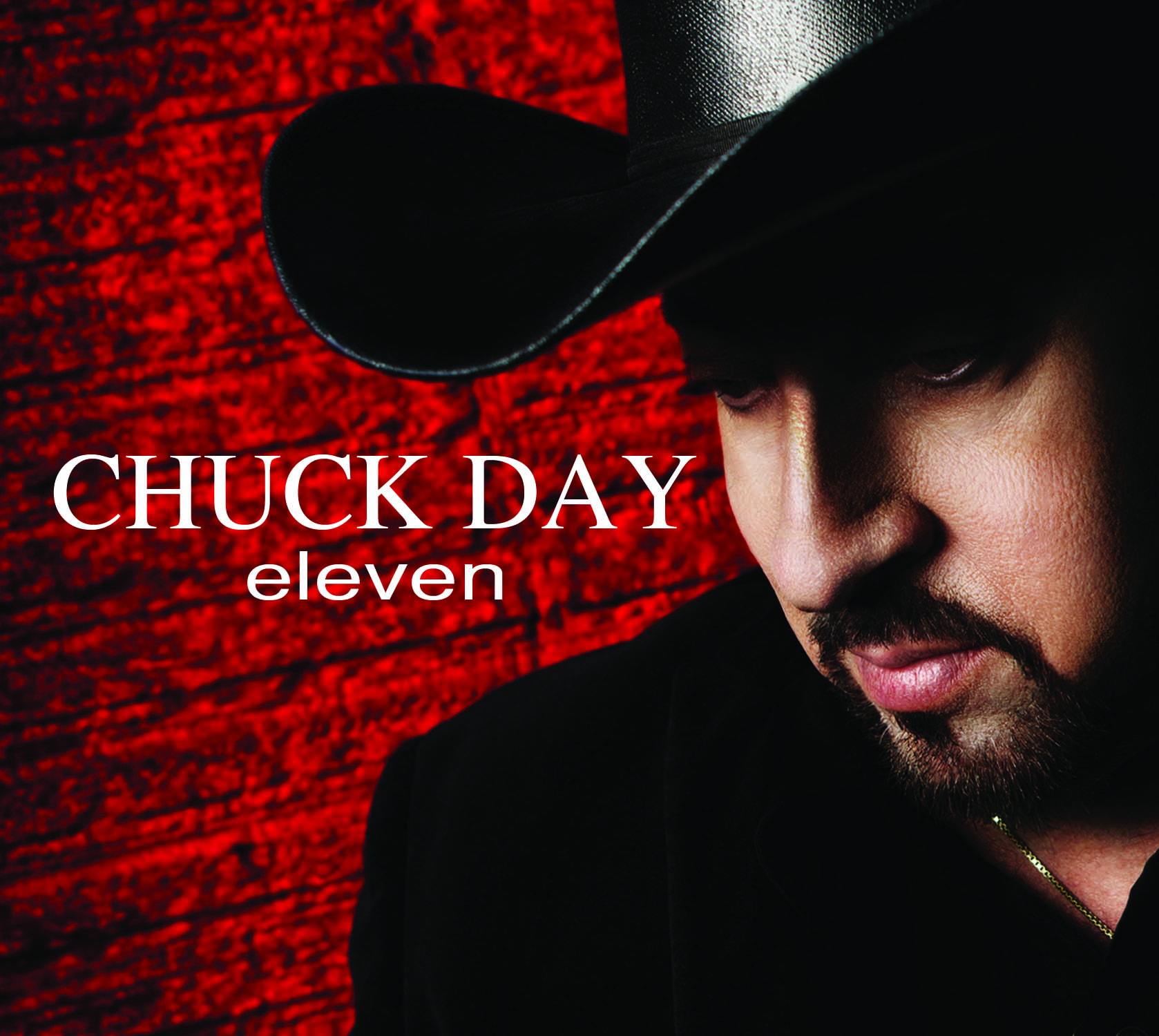 Award Winning Artist Chuck Day's Newest CD eleven featuring title track I'll Stand Up and Say So
